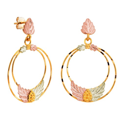 Black Hills Gold Double Circle Earrings from Mt. R...